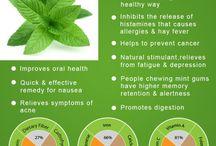healhy herbs detox benefits