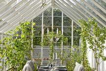 Giardini ed esterni