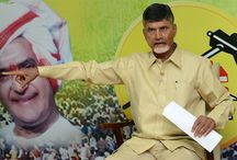 TDP / TDP, TDP Party, Telugu Desam Party, TDP Updates, TDP latest, NTR, Chandra Babu, TDP Party Office / by The Hans India - News Paper With A Difference