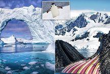 Antarctica Photographer Splendid