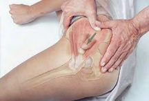terapia muscular