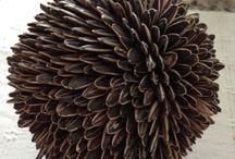 esfera de semillas de guirasol