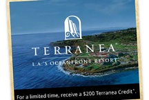 Special Offers, Holidays, and Events at Terranea Resort / Check back often for new Terranea Special Offers, Events and Vacation Deals!  http://www.terranea.com/california-vacation-packages.php / by Terranea Resort