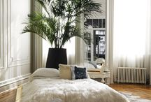 Bedrooms / by Solange Noelle
