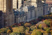 NYC Thanksgiving  / by Brooke Bradburn