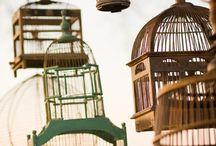 Bird.tweet.