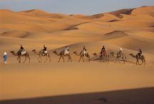 Morocco Adventure Tours