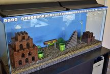 Fish Tanks and Turtles / by Kaitlyn Pickard