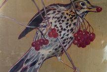 Lindsay's bird paintings