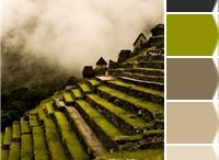 Color Schemes for the home / by Mary Pennington