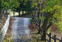 paisagismo rural