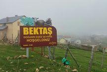 Konuklu Köyü (Melense) Bektaş Yaylası / Giresun Dereli Rakım 2100