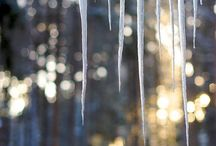 Inverno / Winter