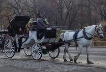 Christmas 2012 / New York City at Christmas Time
