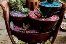 cascada de cactus