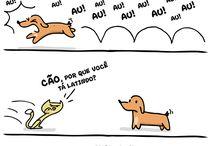 cat•°• Dog