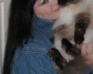 Котохудожник Ирина Гармашова (Irina Garmashova) / Кошки Ирины Гармашовой все разные, но, безусловно, каждая из них выглядит необыкновенно живой, яркой и по-настоящему передаёт любовь художницы к деталям и образам