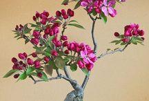 ^-^ bonsai ^-^ japanese <3
