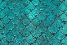 Scallop Patterns