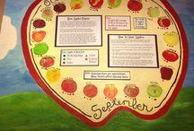Apple Varieties / Chose from these varieties of apples
