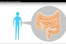 Darmreiniging met de Darmdetox kuur / Darmdetox kuur bestaat uit sachets die een diepe reiniging geven van de dikke en dunne darm door het verwijderen van een biofilm die soms meterslang kan zijn. Een kuur is 3,6 0f 12 dagen. Uw stofwisseling verbeterd hierdoor aanzienlijk en u krijgt tevens een boost van nieuwe energie. Mocht u deze kuur willen gaan doen vergeet dan bij het afrekenen niet de volgende code in te vullen: hn10detox Dan ontvangt u bij het afrekenen10% korting op uw aanschaf.