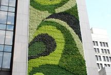 The Green Wall Dividend / Somewhere Between a Green Roof and a Horizontal City Garden