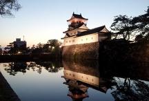 Castle / Japanese castle