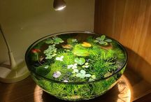 bowl pond ideas