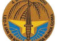 Congo insignes plus Medailles
