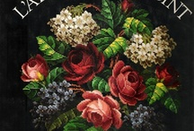 kwiaty - krzyżykowe