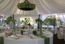 Una festa bianco e verde.