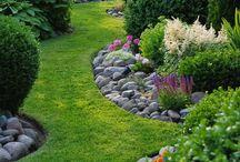 istutus puutarhaan