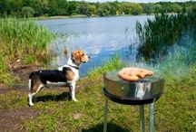 A Pet-friendly RV Trip / Traveling with a pet can be a challenge.  While some pets are born travelers, others may need some travel training.  And, planning ahead to provide some comforts of home may make your pet feel more at ease while traveling.  Here are ways outlined to achieve a successful pet-friendly road trip while traveling the country in your RV motorhome or trailer as well as links to interesting tips and websites.