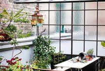 City gardens / city gardens