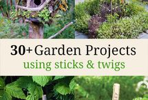 Garden lookup / Gardening is one of the easiest things that we can do in our home. Gardens shows a pleasant atmosphere and also it refreshments our mind too. So lets take a look of our garden with new tips and projects.