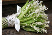 Flowers  / by Tanya Dalton