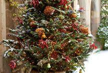 Christmas / by Heather Harbin