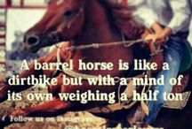 Barrel racing and ropin / by Carly Lynch