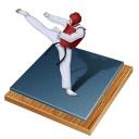 ⚽ Taekwondo