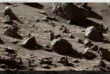 Mars 17