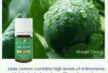 Young Living Jade Lemon Essential Oils