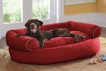 Dog sofà
