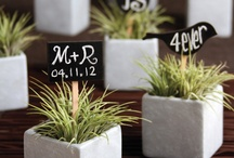 Green wedding favours / by ethicalweddings