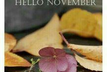 Months & season