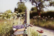 Bicycle Theme Wedding / Bicycle Theme Wedding ideas and inspiration