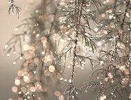 Mood Board: Winter / Seasonal Mood Board: Winter