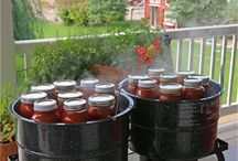 Canning and Freezing / by Michelle Rinehart