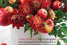 flowers + fruit / by Robin Mann