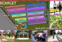 Rumah PIK 2 Cluster Scarlet / Rumah PIK 2 dijual perdana cluster scarlet