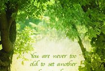 Quotes / Inspiring Quotes / by Debra Farrell